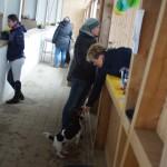 Dressurturnier Dunzenhausen 491